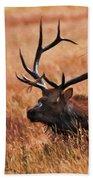 Bull Elk In A Field Beach Towel