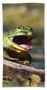Bull Frog Beach Towel