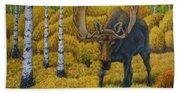 Bull Moose Beach Sheet