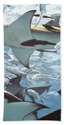 Bullsharks Beach Towel