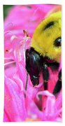 Bumble Bee And Flower Beach Towel