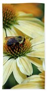 Bumble Bee At Work Beach Towel