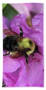 Bumble Bee On Rhododendron Blossoms Beach Towel