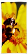 Bumble Bee On Yellow Flower Beach Towel