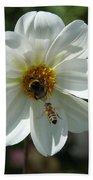 Bumblebee And Bee Beach Towel