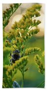 Bumblebee And Canadian Goldenrod 15 Beach Towel