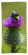 Bumblebee On Thistle Beach Towel