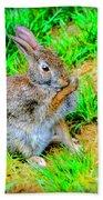 Bunny Secrets Beach Towel