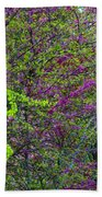 Bursting Forth Color Beach Towel