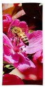 Busy As A Bee 031015 Beach Towel