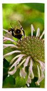 Busy As A Bee Beach Towel by Valeria Donaldson