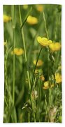 Buttercups And Green Grass At Moore State Park Beach Towel