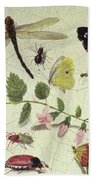 Butterflies, Insects And Flowers Beach Towel
