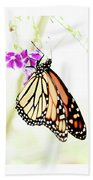 Butterfly 01 Beach Towel