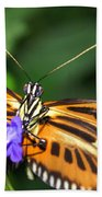 Butterfly 2 Eucides Isabella Beach Towel