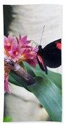 Butterfly 2 Beach Towel