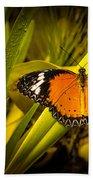 Butterfly 23 Beach Towel