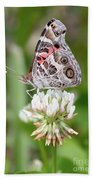 Butterfly And Bugs On Clover Beach Towel