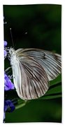 Butterfly And Flower Beach Towel