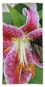 Butterfly And Lilly Beach Towel