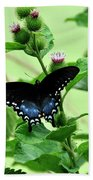 Butterfly And Mossy Pond Beach Towel