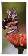 Butterfly And Orange Zinnia Beach Towel