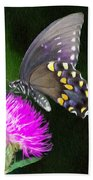 Butterfly And Thistle Beach Towel