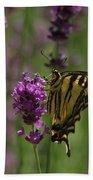 Butterfly Balancing Act Beach Towel