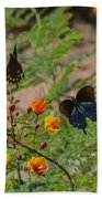 Butterfly Ballet Beach Towel