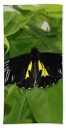 Butterfly Black And Yellow Beach Towel