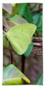 Butterfly Camouflage Beach Towel
