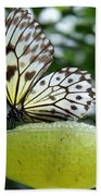 Butterfly Cocktail Time Beach Towel