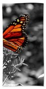 Butterfly Color On Black And White Beach Towel