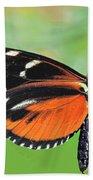 Butterfly  Golden Helicon Beach Towel