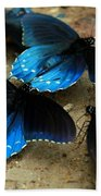 Butterfly Huddle At The Puddle Beach Towel