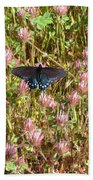 Butterfly In Clover Beach Towel