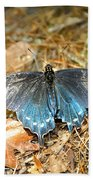 Butterfly In The Forest Beach Towel