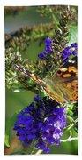 Butterfly Joy Beach Sheet