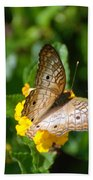 Butterfly Land Beach Towel