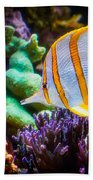 Butterfly Of The Sea Beach Towel