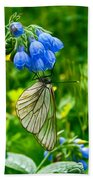 Butterfly On A Flower Beach Towel