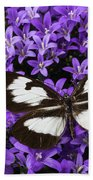 Butterfly On Campanula Get Mee Beach Towel