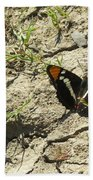 Butterfly On Cracked Ground Beach Towel