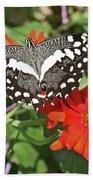 Butterfly On Flower Beach Towel