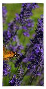 Butterfly On Lavender Beach Towel