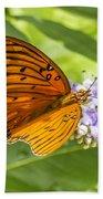 Butterfly On Purple Beach Towel