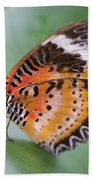 Butterfly On The Edge Of Leaf Beach Towel by John Wadleigh