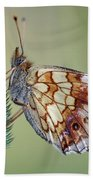 Butterfly On The Grass Beach Towel