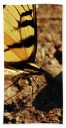 Butterfly On The Rocks Beach Towel