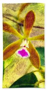 Butterfly Orchid - Encyclia Tampensis Beach Towel